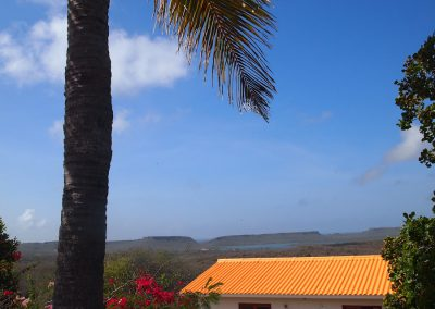 palm en huis