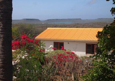 tuin en huis uitzicht